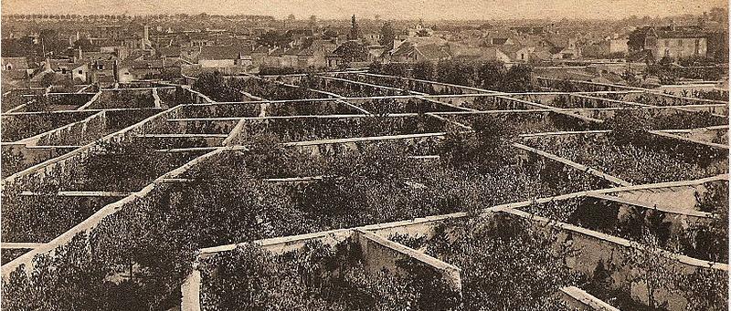 Ovocné steny v Montereuil-sous-Bois