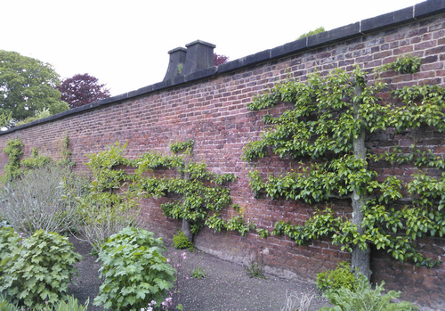 Vyhrievané steny mali zabudovanú sieť komínov, ktré boli napojené na ohniská, neskôr na pece